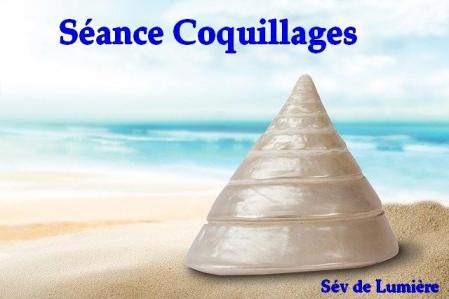 Seance coquillages